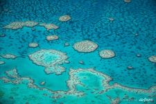 The Great Barrier Reef #37