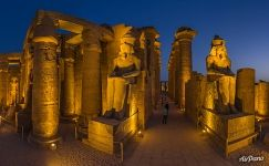 Colossuses. Luxor Temple