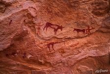 Petroglyphs of the Sahara Desert