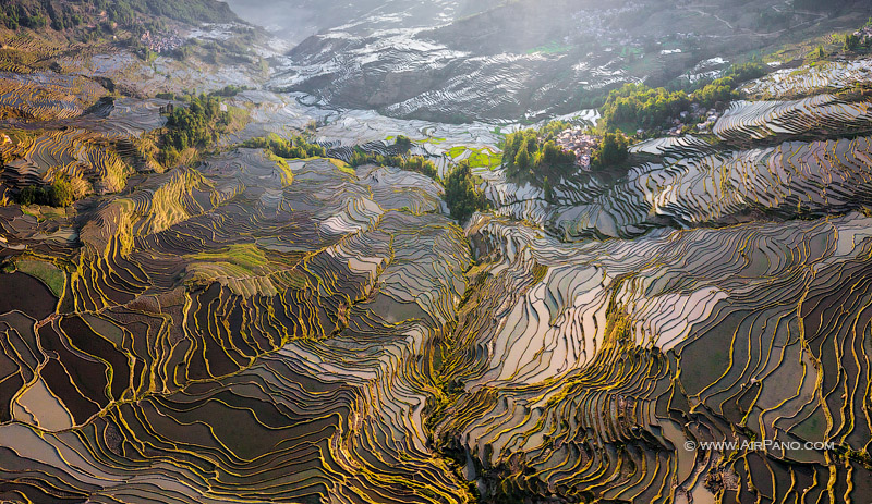 Yuanyang Hani Rice Terraces