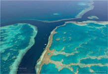 The Great Barrier Reef #8