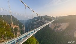 People on the Zhangjiajie Glass Bridge