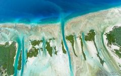 Little islands of Aldabra